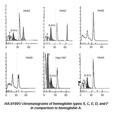 HA8180 chromatograms